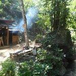 Bellissimi cottages immersi nella natura