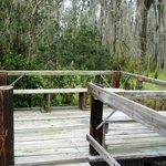Many deck areas to view wildlife