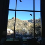 View from Cascade Lounge where I enjoyed morning coffee or evening happy hour