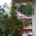 Balcon fleuri du guesthouse