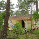 Fregate cabin amongst the pines