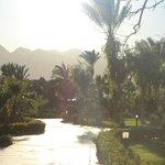Foto de Nuweiba Coral Resort