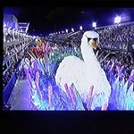 all the tvs show Rio carnival