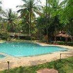 beautifully kept pool