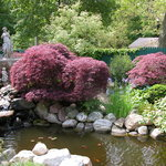 Relaxing Gardens