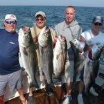 Tuna Hunter Striped Bass