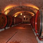 Local wine cellar tour