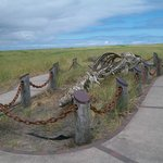 A huge whale skeleton at Long Beach Trail
