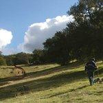 Santa Ysabel Open Space Preserve