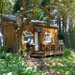 The Maison Cottage in the trees