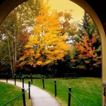 The Arch in the fall
