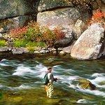 Tuolumne River Fly Fishing