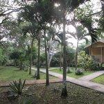 Midas Resort grounds