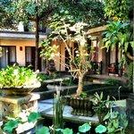 Garden guest rooms