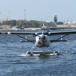 Seawings Seaplane Tours Foto