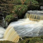 Rivelin Valley