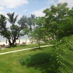 Тропический сад, зона завтрака, пляж