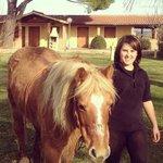 In giardino con i cavalli