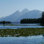 Jackson Lake et Grand Teton