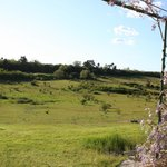 vue du champs de la chambre Menhir