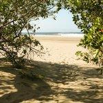 Walkway to beach from Apartamento Cangrejos.