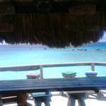 the bar on the beach