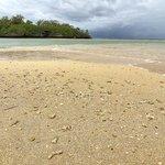 A shelly sandbar