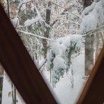 We woke up to beautiful snow on Sunday!