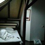 Zdjęcie 3877531