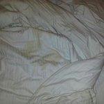 Dreck im Bett