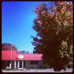 Fall in Heber Springs