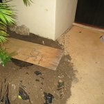 board across hole dug in front of room--we looked at this lovely sight for three days