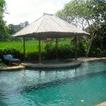 Wonderful Pool -- suitable for laps