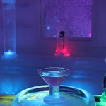 ice museum - bar