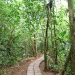 温泉への道