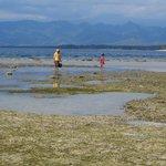 bassa marea a Gili Air