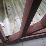 Broken and filthy rails right next to our room !