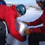 Examining the snow pack during an avalanche awareness sessio