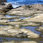 Tide Pools at Low Tide