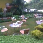 Small but nice Garden
