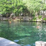 cenote on grounds for snorkeling and swimming