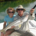 Robin's Great Sarasota Snook