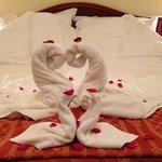 Schwäne aus Handtücher