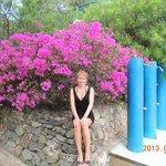 De jolies fleurs sur le site près de la piscine