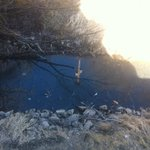 Dirty creek view