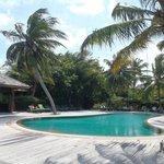Kuredu : piscine O'Resort
