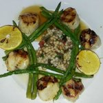 Entree:  Carmelized Scallops