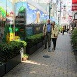 Фотография 1076206