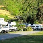 Waikawa Bay Holiday Park Photo