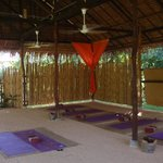 the yoga sala